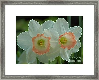 Twins Framed Print by Kathleen Struckle
