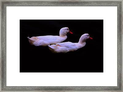 Twins Framed Print by Nick Gustafson