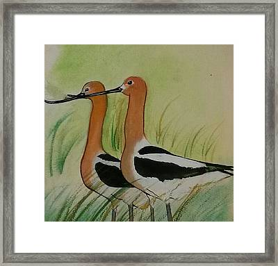 Twins Of Feathers Framed Print