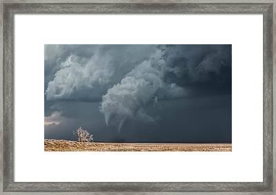 Twinsie Framed Print