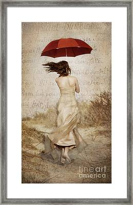 Twirling Painted Lady Framed Print