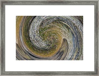 Twirls Of Grass Framed Print by Brenton Cooper