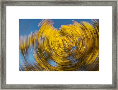 Twisted Colors Framed Print