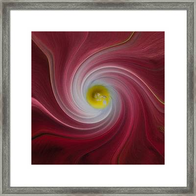 Twisted Glory Two Framed Print by Michael Peychich