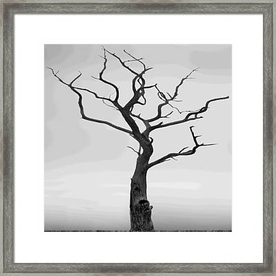 Twisted Framed Print by Mike McGlothlen