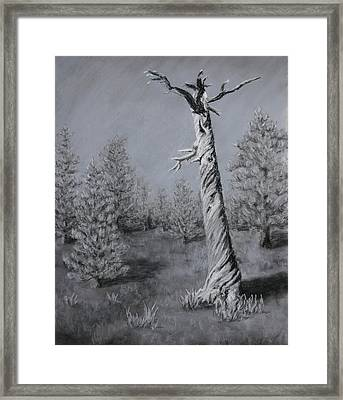 Framed Print featuring the painting Twisted by Nancy Jolley