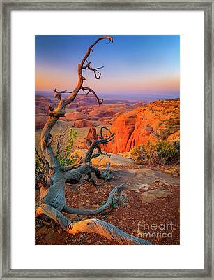 Twisted Remnant Framed Print