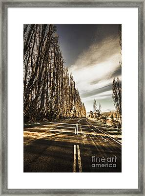 Twisted Roads And Dead Trees Framed Print by Jorgo Photography - Wall Art Gallery