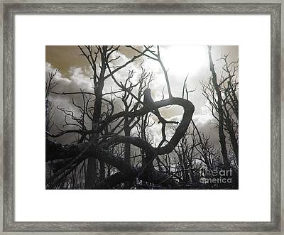 Twisted Wood Framed Print
