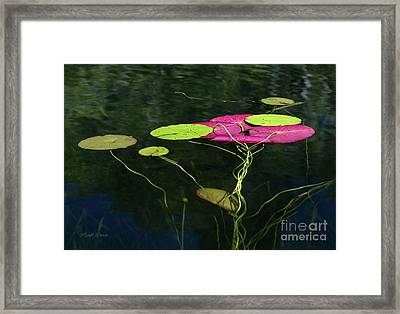 Framed Print featuring the photograph Twister by Michelle Wiarda