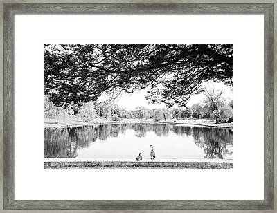 Framed Print featuring the photograph Two At The Pond by Karol Livote