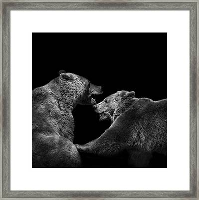 Two Bears In Black And White Framed Print