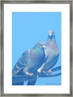 Two Birds In Spring Framed Print