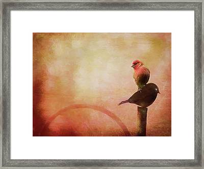 Two Birds In The Mist Framed Print by Bellesouth Studio