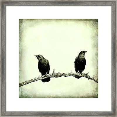 Two Birds One Branch Texture Square Framed Print by Terry DeLuco