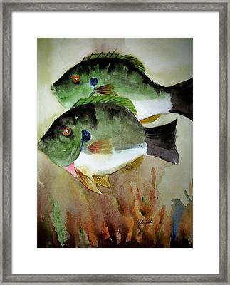 Two Bluegills Framed Print by Audrey Bunchkowski