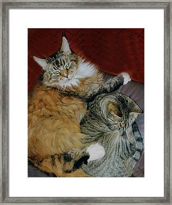 Framed Print featuring the photograph Two Brothers by Roger Bester