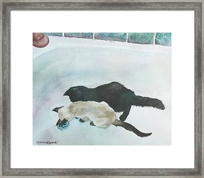Two Cats In A Tub Framed Print