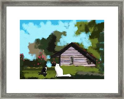 Two Cats In The Yard Framed Print by Jennifer Buerkle