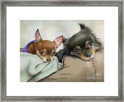 Two Chi's In A Pod Framed Print