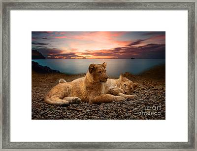 Two Framed Print