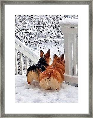 Two Corgis In The Snow Framed Print