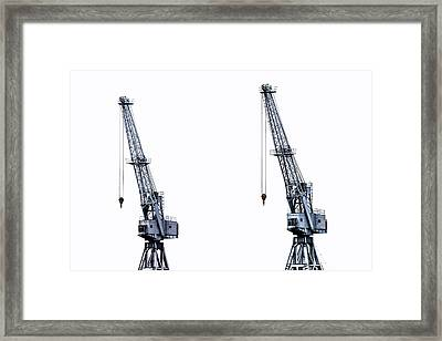 Two Cranes Framed Print