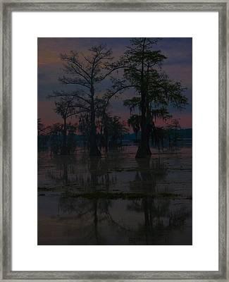 Two Cypress At Dawn Framed Print