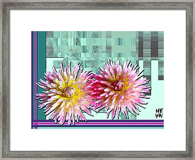 Two Dahlias Framed Print