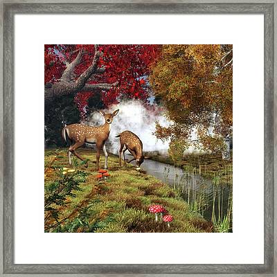 Two Deers Framed Print