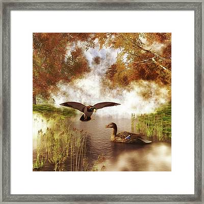 Two Ducks In A Pond Framed Print