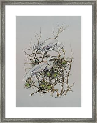 Two Egrets In A Tree Framed Print by Laurie Tietjen