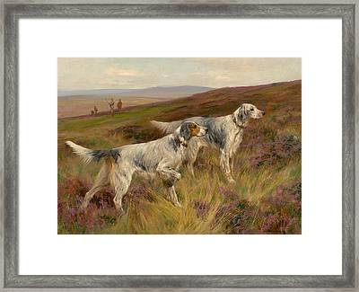 Two English Setters On A Grouse Moor Framed Print by Celestial Images