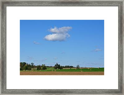 Two Fluffs Framed Print by Jan Amiss Photography
