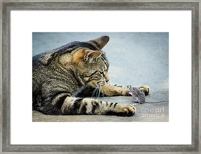 Two Friends Framed Print by Mike Ste Marie