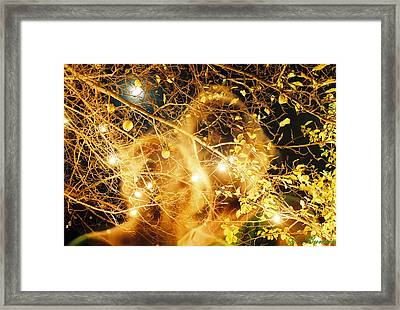 Framed Print featuring the photograph Two Generations by Angelique Bowman