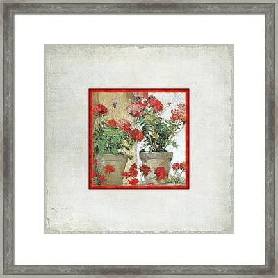 Two Geranium Pots Framed Print
