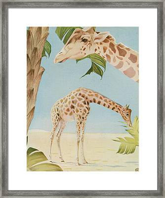 Two Giraffes Framed Print by Art Museum