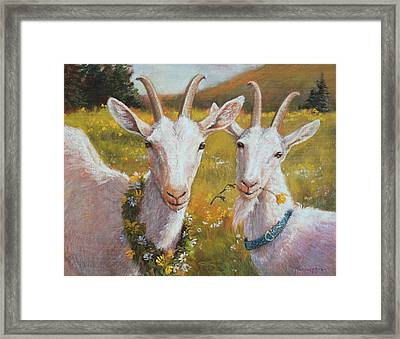Two Goats Of Summer Framed Print by Tracie Thompson