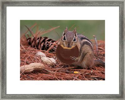 Two Great Tastes Framed Print by Lori Deiter