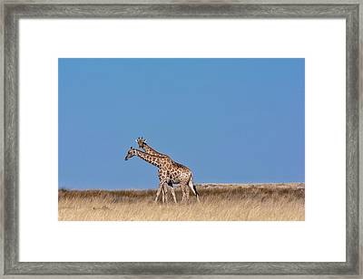 Framed Print featuring the photograph Two Heads Are Better Than One by Rand