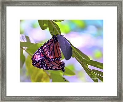 Two Hearts Beat As One Framed Print by Robyn King
