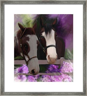 Two Horses And Purple Flowers Framed Print