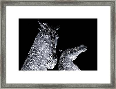 Two Horses Framed Print by Stephen Taylor