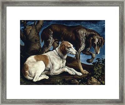 Two Hounds Framed Print by Jacopo Bassano
