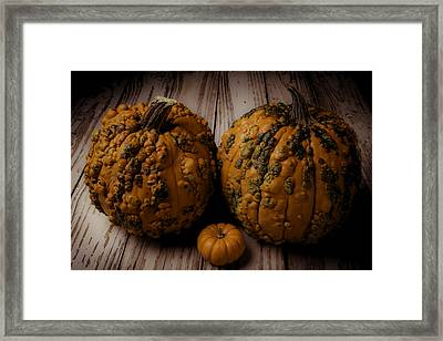 Two Knukleheads Framed Print by Garry Gay