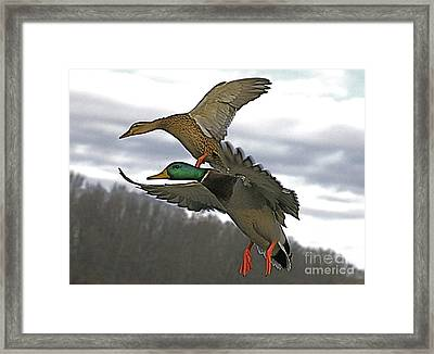 Two Land Framed Print by Robert Pearson