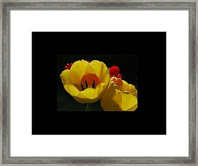 Two-lips Framed Print