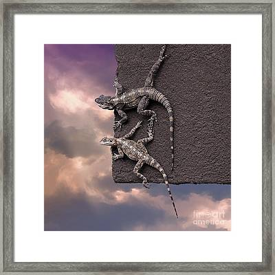 Two Lizards On The Edge Of The Roof Framed Print