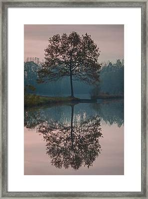 Framed Print featuring the photograph Two Loners by Davor Zerjav